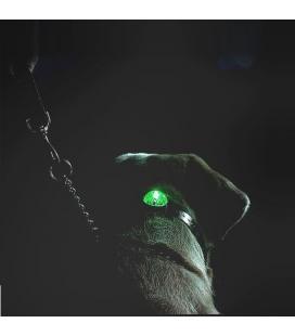 Beacon Locator SportDog svíticí přívěšek